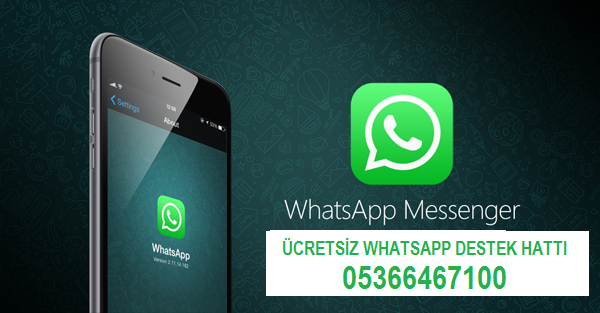 Tips to Change the Phone Number of WhatsApp on iPhone