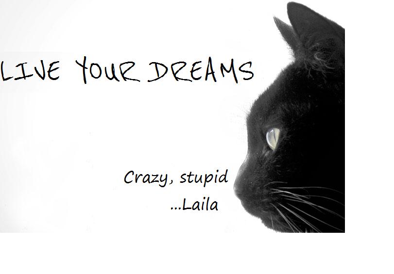Live your dreams.... Crazy, stupid...Laila