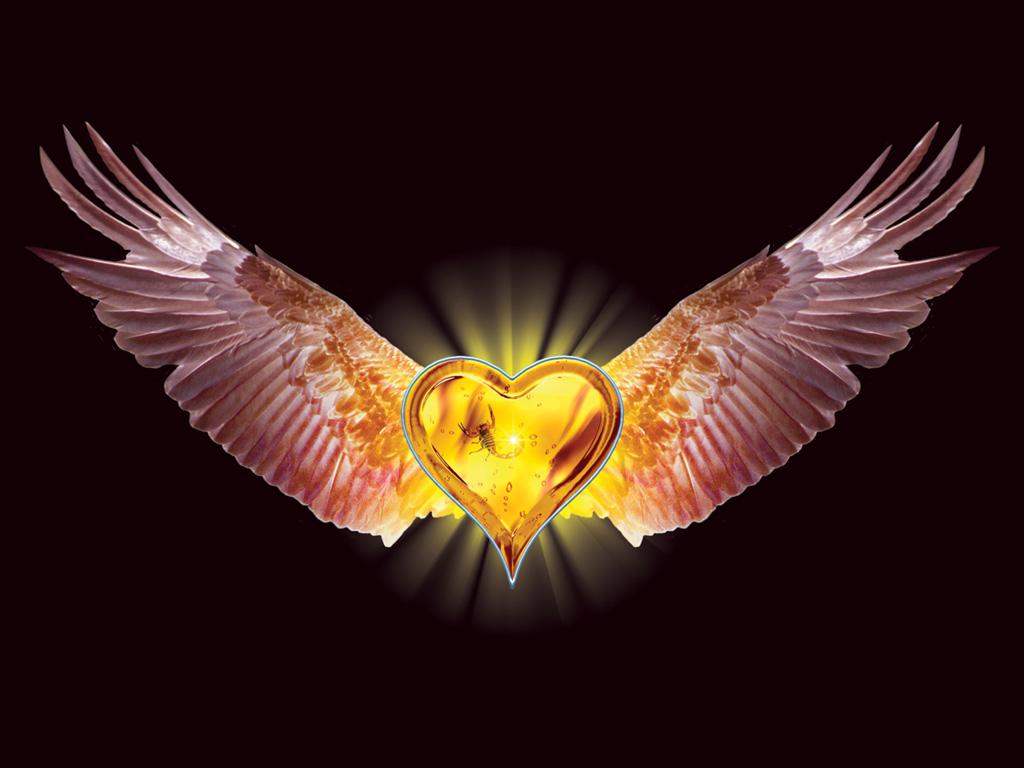 http://3.bp.blogspot.com/-TNoKu43ACqk/TZlq3wO-eBI/AAAAAAAAAJw/HGJ73gVYboo/s1600/eagle_heart_1024x768.jpg