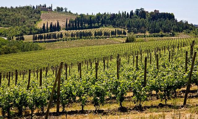 Gaiole in Chianti, Tuscany
