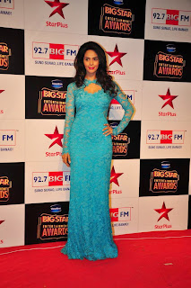 Actress Mallika Sherawat Pictures in Long Dress at BIG STAR Entertainment Awards 2014  5