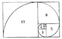 Sucesión y espiral de Fibonacci