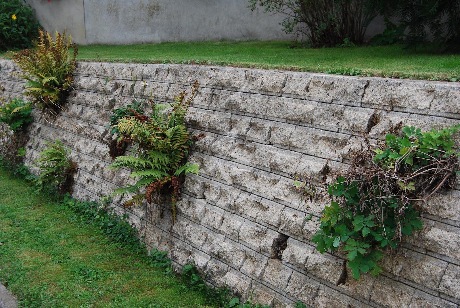 Le blog de parcs et jardins de l 39 oise le jardin de philippe et annie aubry appilly - Muret floral de soutenement ...