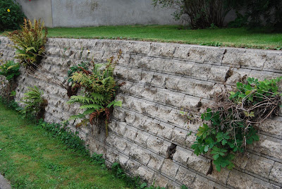 Le blog de parcs et jardins de l 39 oise le jardin de for Cherche jardin a entretenir