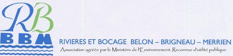 Rivières et  bocage Bélon, Brigneau, Merrien