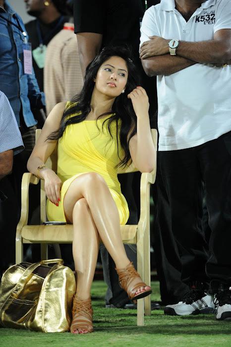 nikesha patel spicy actress pics