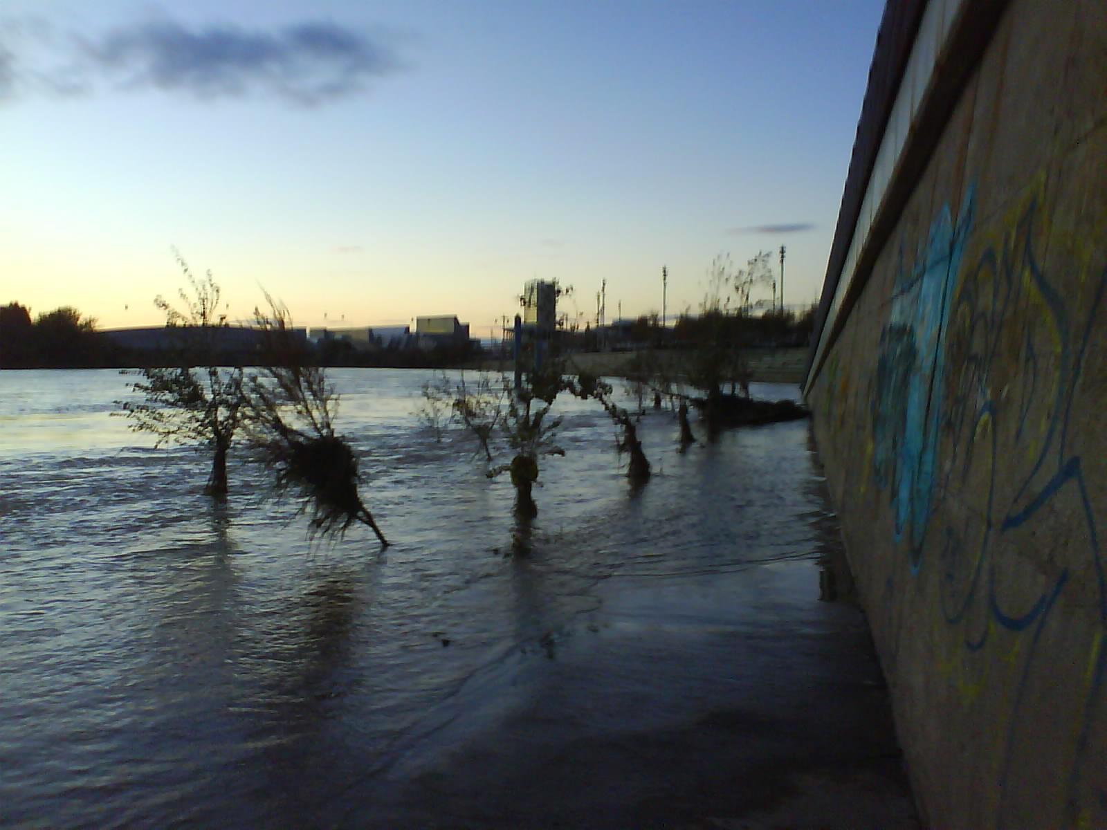 Ebro inunda camino orilla expo