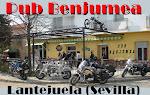 PUB BENJUMEA- Lantejuela (Sevilla)