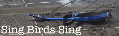 Sing Birds Sing