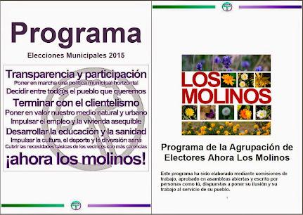 Programa Electoral de Ahora Los Molinos