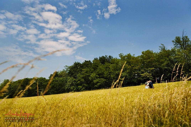 sposi e campo di grano matrimonio Langhe