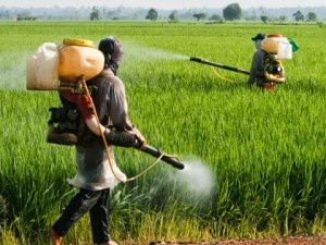 sri lanka bans monsanto