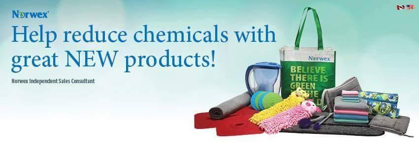 Clean Fun Clean Home Healthier Living