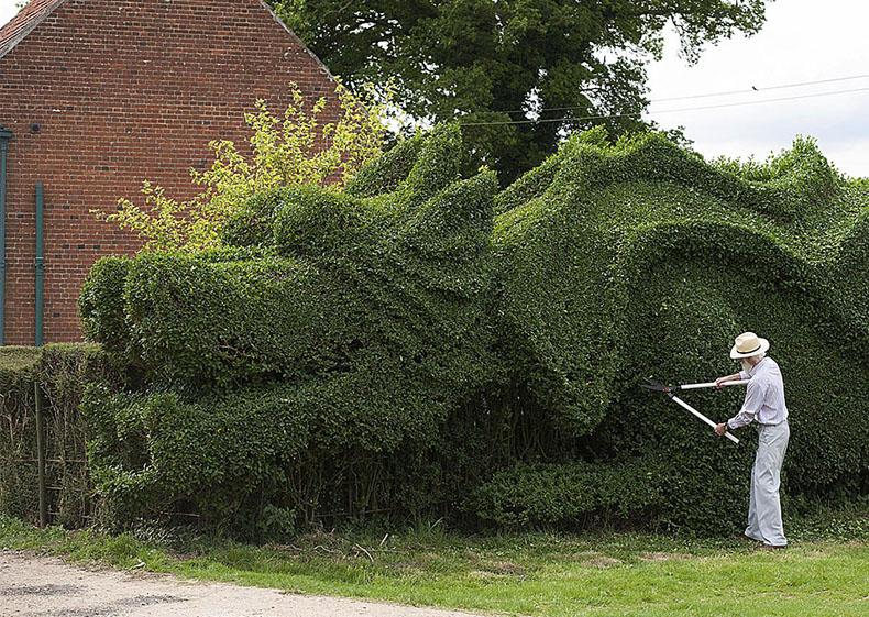 Anciano jardinero pasó los últimos 13 años convirtiendo su cerco de 150 metros de largo en un fantástico dragón