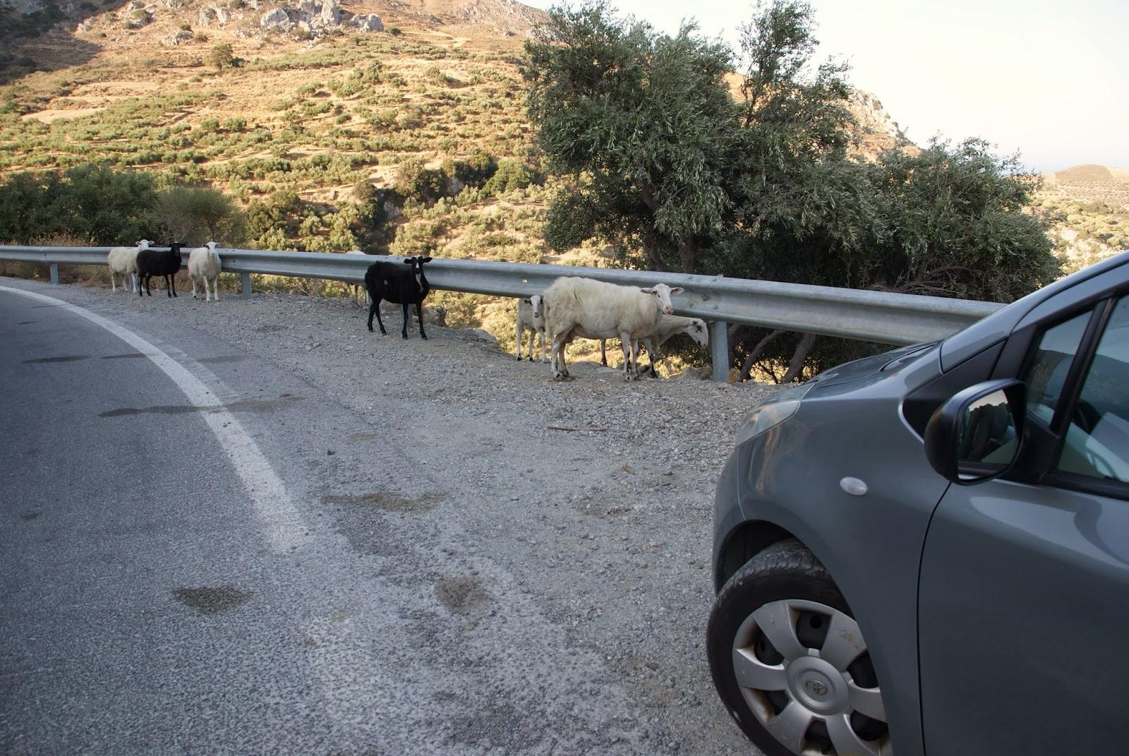 Drogi Kreta