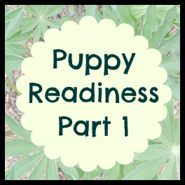 Puppy Readiness Part 1