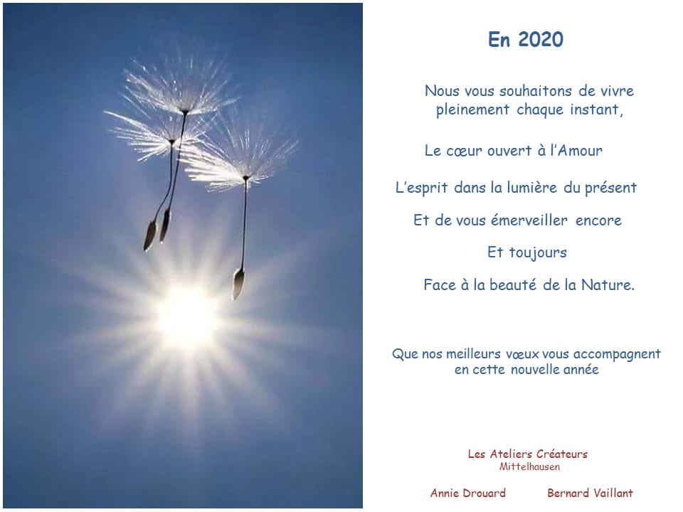 Une belle et douce année 2020