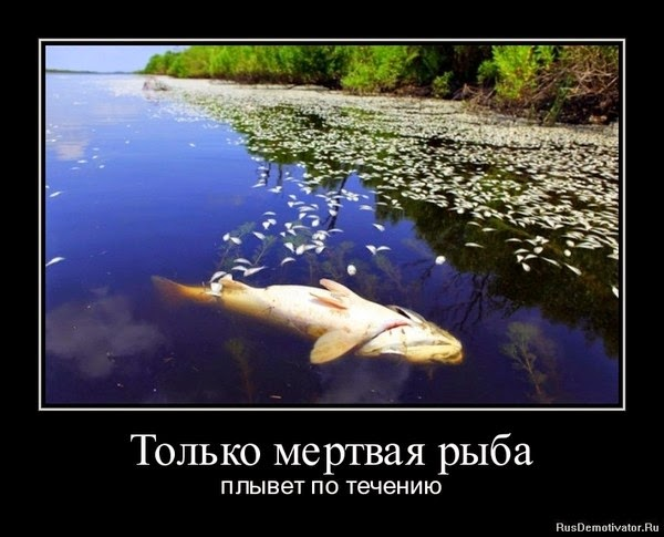 можно ли плыть на лодке против течения