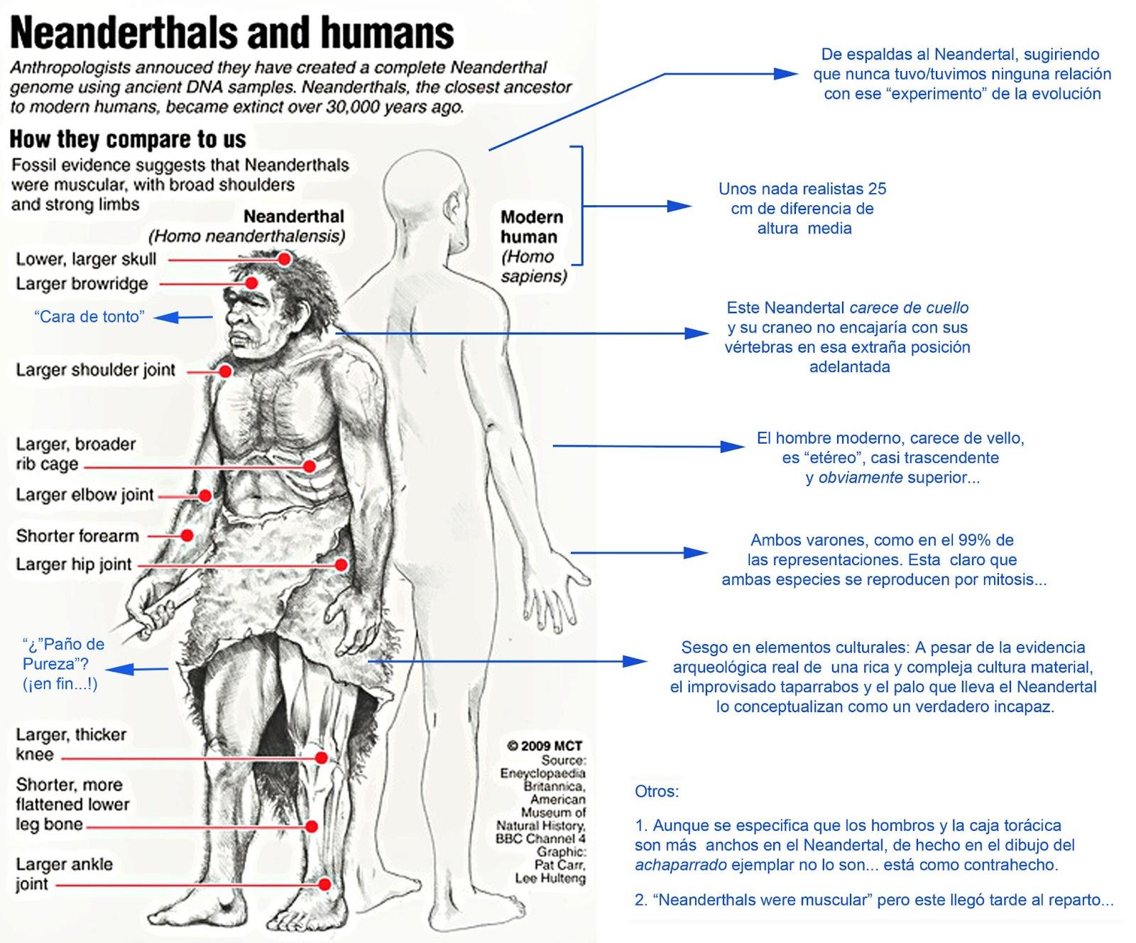 El Neandertal tonto ¡qué timo!: Prejuicios, ilustraciones y Neandertales