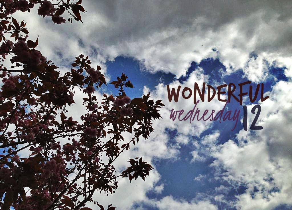 Wonderful Wednesday 12