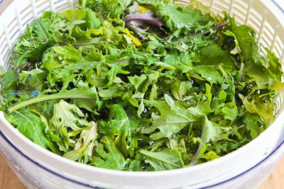 Raw Baby Kale Salad with Apples, Sunflower Seeds, and ...