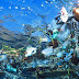 Alta Temporada - CUIDADO - Lixo do mar também atinge aves