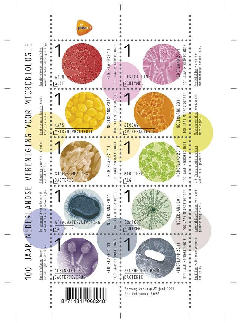 Нидерланды: серия марок, посвященных 100-летию микробиологии