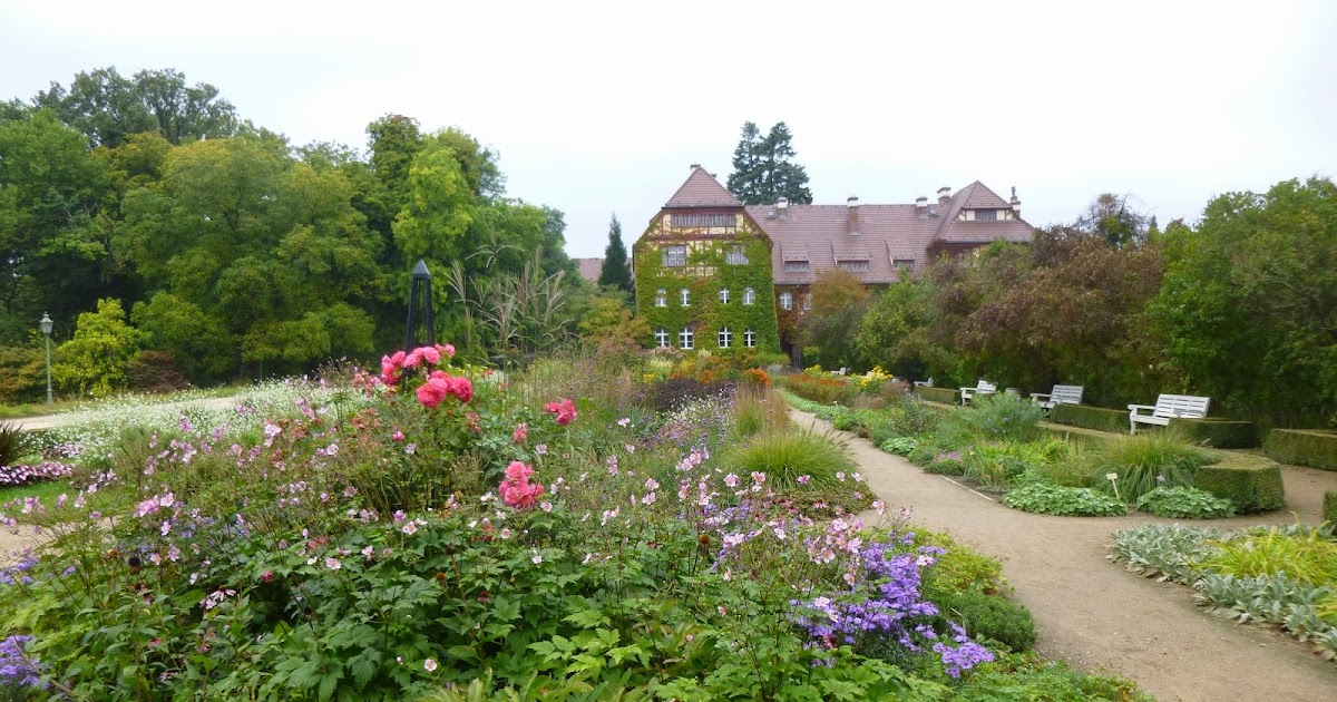 Garden of Aaron: Travel Report -- Berlin Botanical Garden: Papaya ...