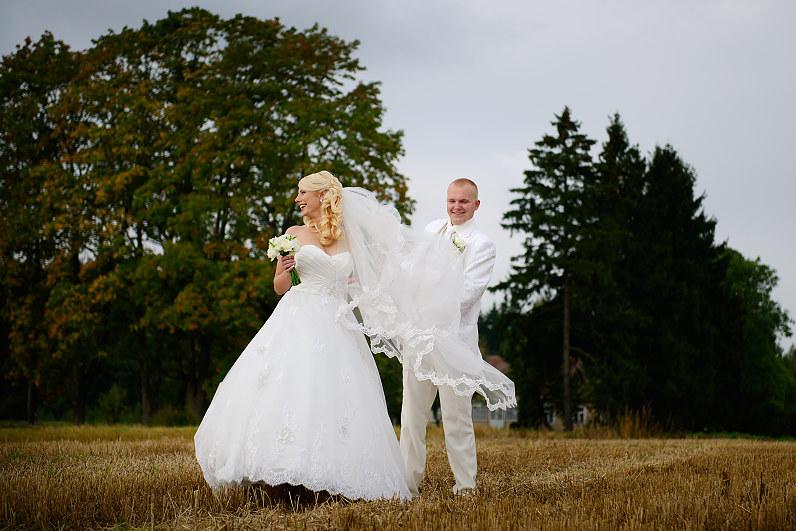 vestuvių fotosesija rugių lauke