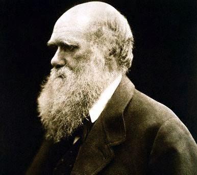 Retrato de Darwin