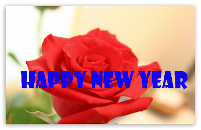 Beautiful Happy New Year Flower 2014