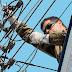 ΕΙΔΕΣ Η ΔΕΗ; Έκοψε   15.000 συνδέσεις ρεύματος (και σε λαϊκές συνοικίες) σε 10 ημέρες!