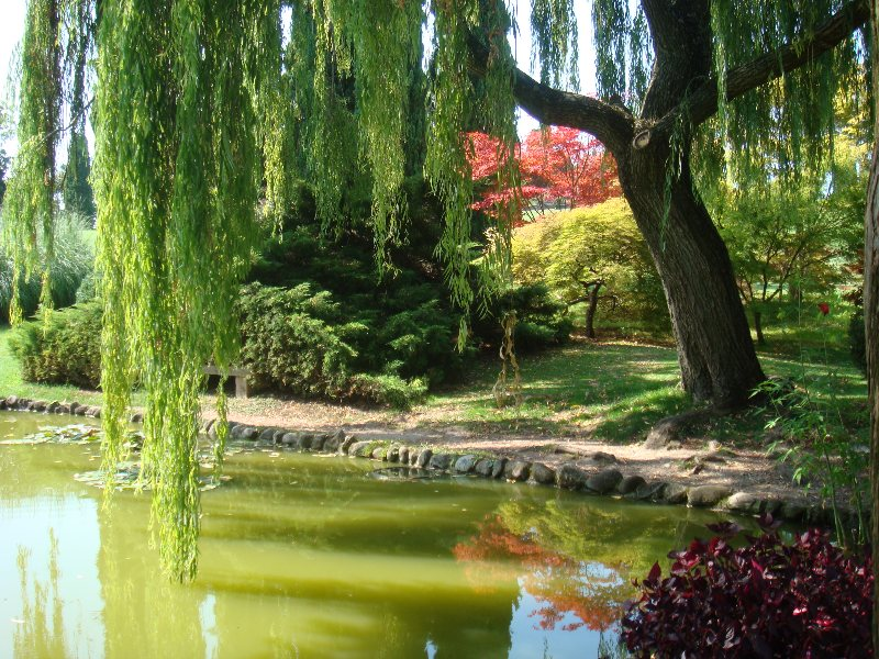 Il parco giardino sigurt blossom zine blog - Il giardino di elizabeth ...