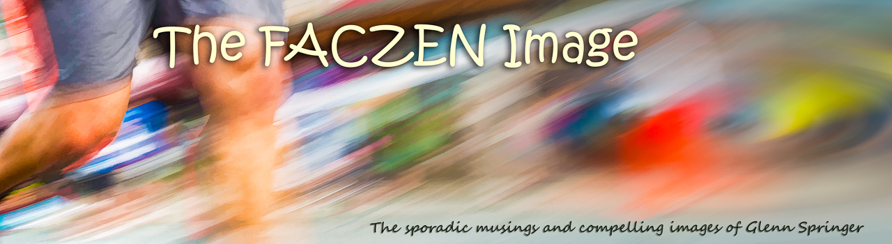 The FACzen Image