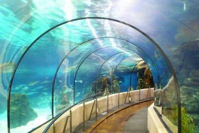 Europabarcelonadn for Aquarium de barcelona