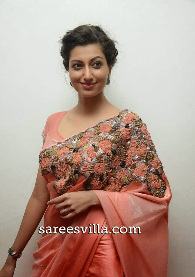 Actress Hamsa Nandini in Saree