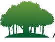Vidyaranya High School Hyderabad Logo