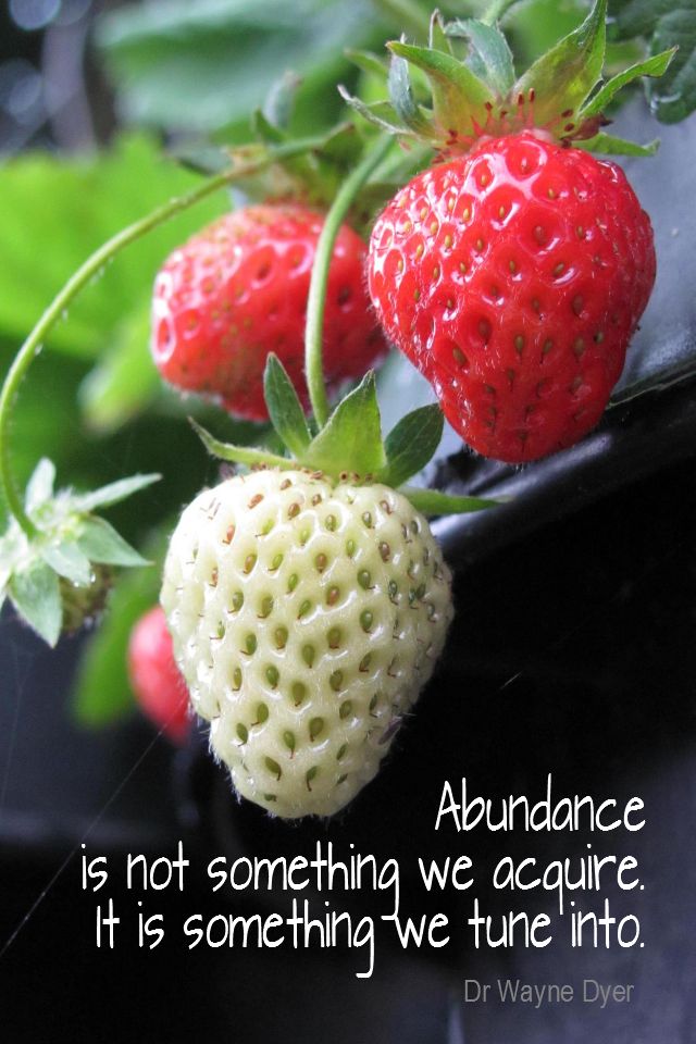 visual quote - image quotation for ABUNDANCE - Abundance is not something we acquire. It is something we tune into. - Dr Wayne Dyer