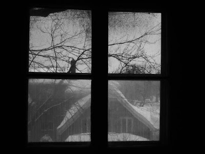 looking out an old window in winter