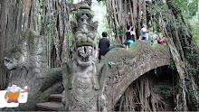 Quatchi in Bali
