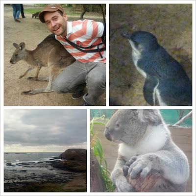 Viaje a Australia. Día 7: De tour en Phillip Island