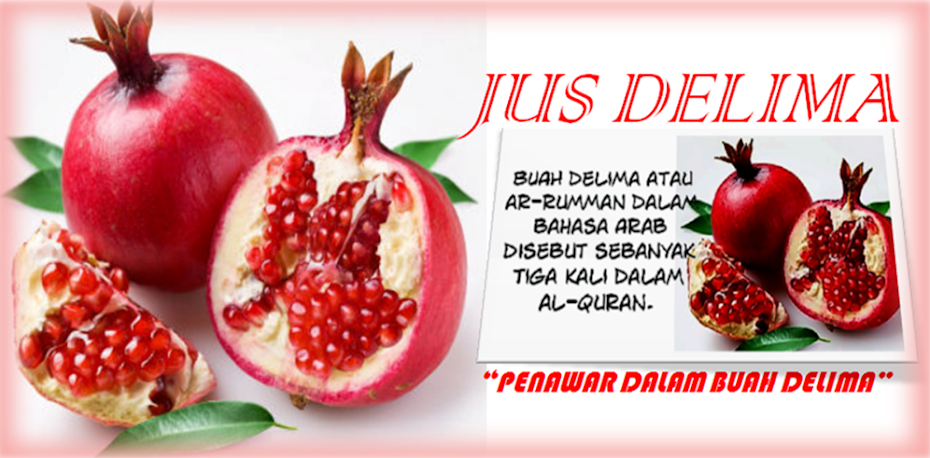 Jus Delima Pilihanku