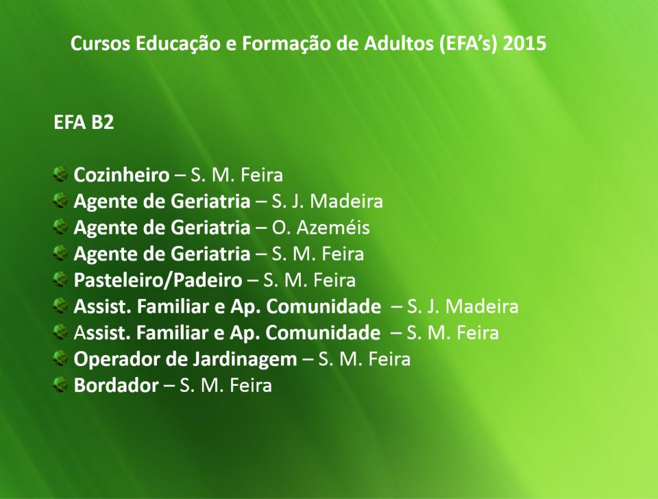 cursos efa b2 para 2015