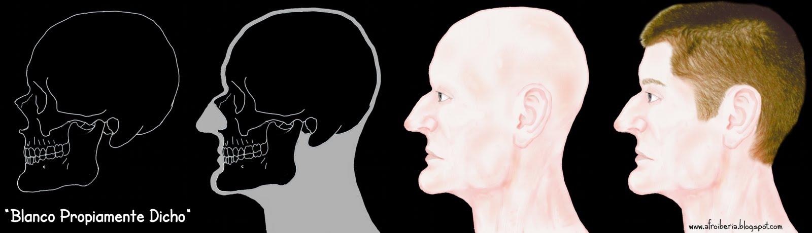 Afroiberia: Rostros del Pasado 3. Los cráneos y el racismo.