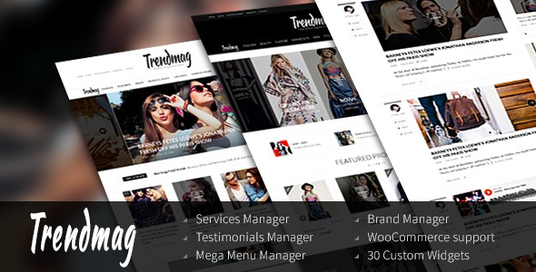 Free Premium Magazine WordPress Template