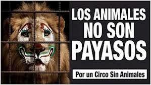 Catalunya prohíbe el circo con animales