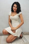 Sheetal Singh Sizzing Photo shoot-thumbnail-17