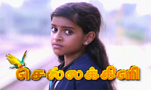 Chellakili 10-03-2014 – Sun TV Serial Episode 80 10-03-14