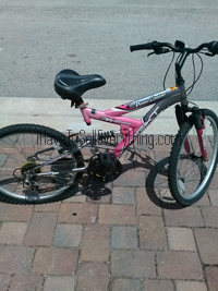 Pink Next power climber bicycle with a Schwinn seat