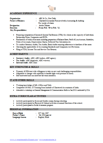 Performa Of Resume For Accountant awesome one page resume sample